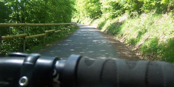Auf dem Ruwer-Hochwald-Radweg unterwegs