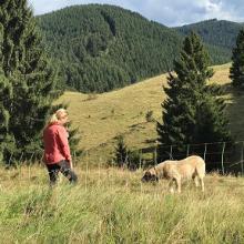 Andy Summit -Alpinsports- Harz Tour ! Baudensteigrundweg Nr.2 Lerbach