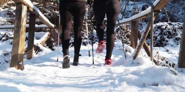 Winterwandern in Ruprecht