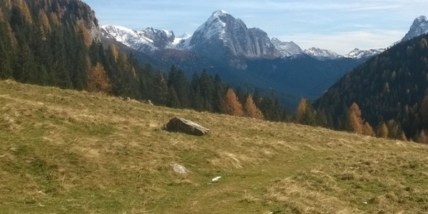Monte Peralba vista da Cresta del Palombino Val Visdende