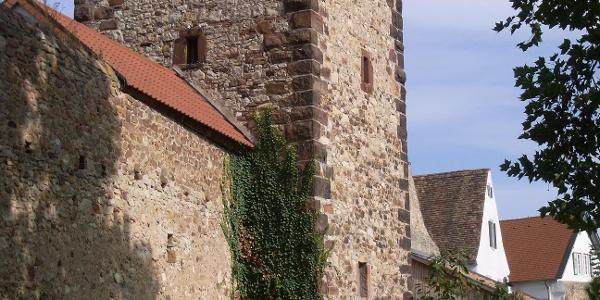Der Herzogturm in Freinsheim