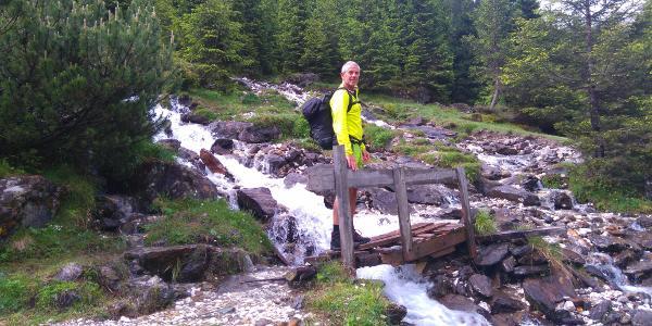 Waldweg zur Laponesalm