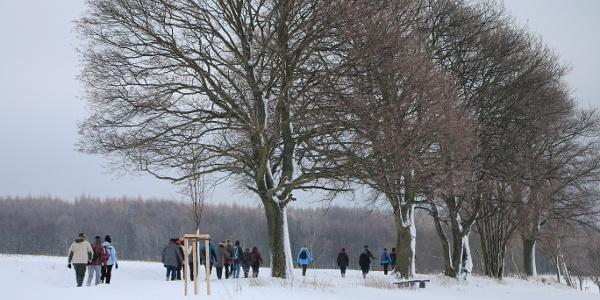 Winterwandern Olbernhau
