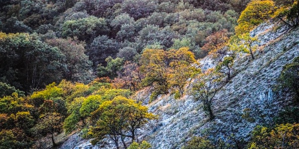 Őszi naplemente a Zajnát-tető oldalában