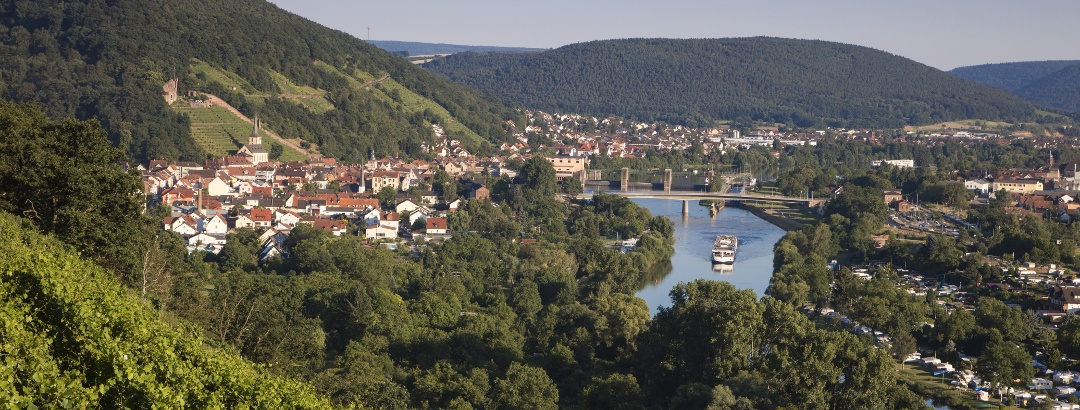 Weinberge und Main bei Klingenberg
