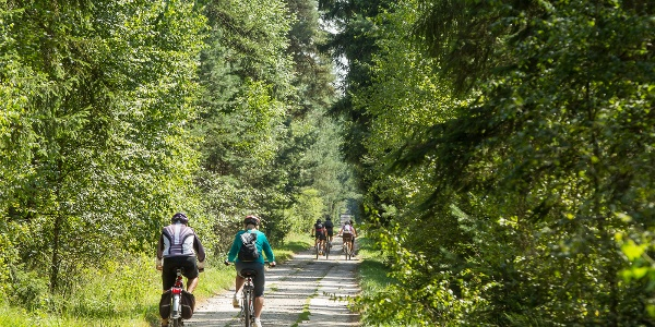 Mountainbiken Waldviertel