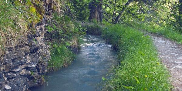 Bisse de Sion irrigation channel in Anzère