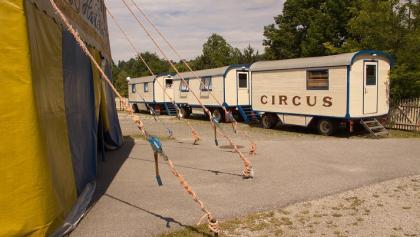 Circus Drosendorf