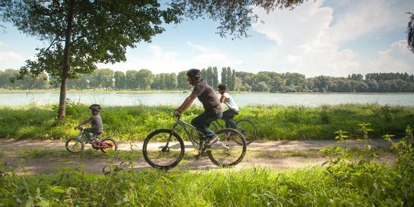 Familie radelt entlang des Rheins