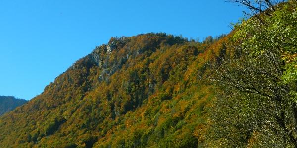 Gipfel Rotmäuer im Herbst