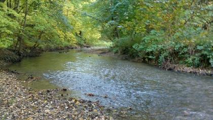 A Gyöngyös patak