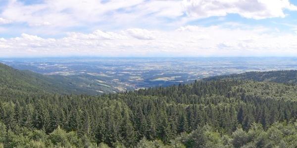 Hirschenstein-Panorama