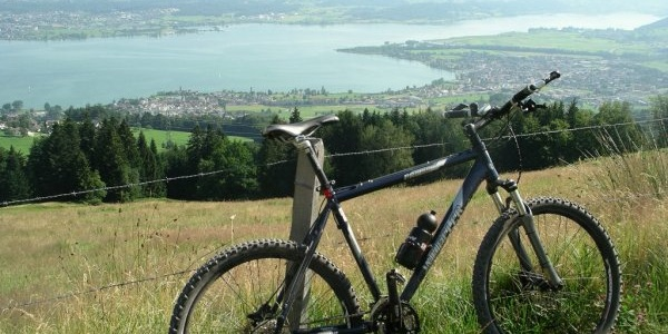 Flirt mit dem Zürichsee
