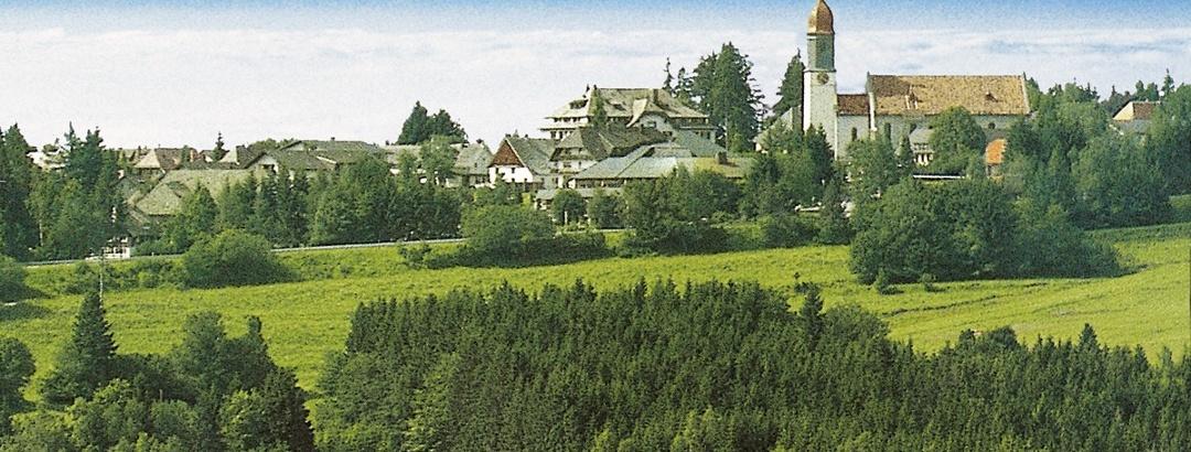 Höchenschwand mit Alpenpanorama