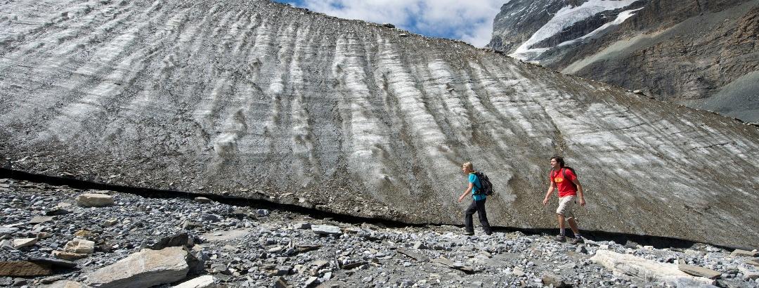 Theme trail runs close to the glacier