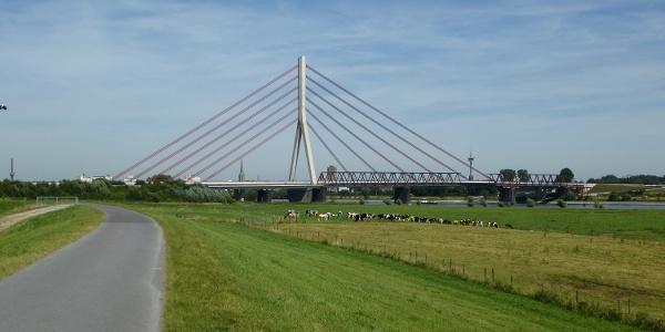 Rheinradweg bei Wesel