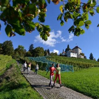Schloss Heidegg