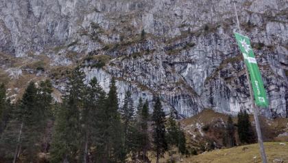 Blick auf die Benediktenwand