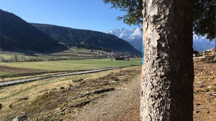 Valle Anterselva | Antholzertal
