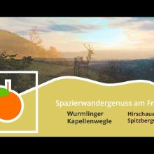 Wurmlinger Kapellenwegle/Hirschauer Spitzbergwegle