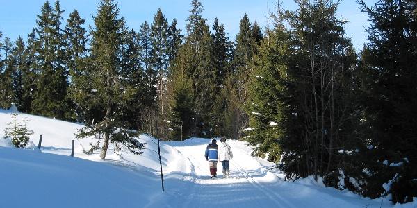 Rundweg zur Skihütte Schwarzenegg