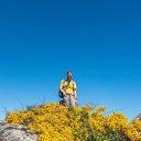 Profilbild von Markus Meier