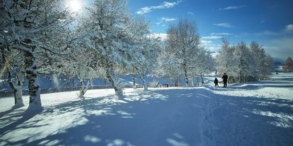Winterwanderung rund um den Golf Ballesteros