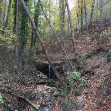Schindbach unterhalb von Langenburg