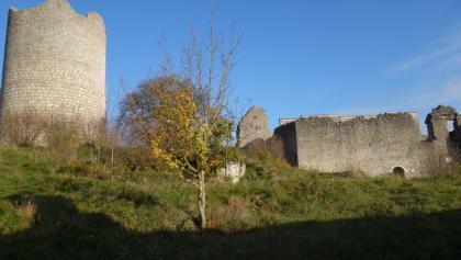 Der Bergfried und die Palastreste
