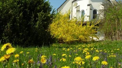 Stiftskirche-Seekirchen