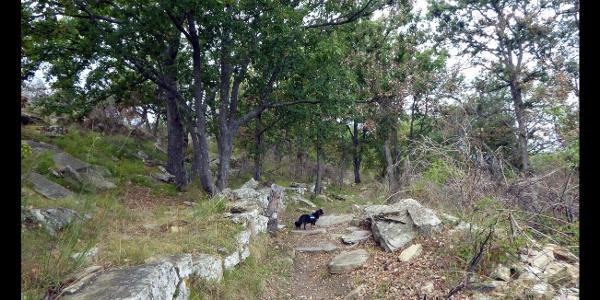 Weg zwischen Capella Santa Brigida und Capella San Bernardo