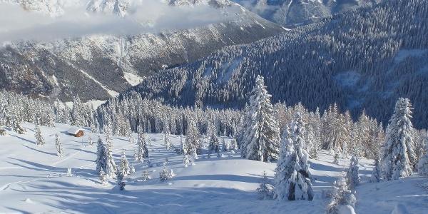 Skitouren Pflerschtal
