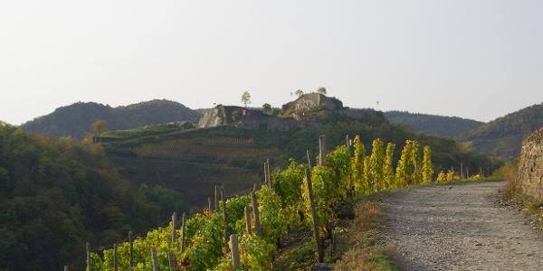 Ruine Saffenburg