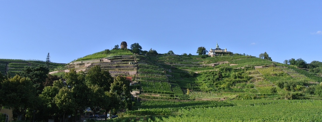 Hausberg des Weinguts Karl-Frierich Aust Radebeul