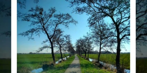 Walking back to the Balkans: The Netherlands