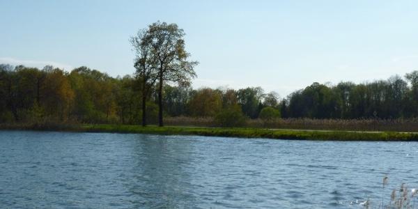 Großer Holschaer Teich