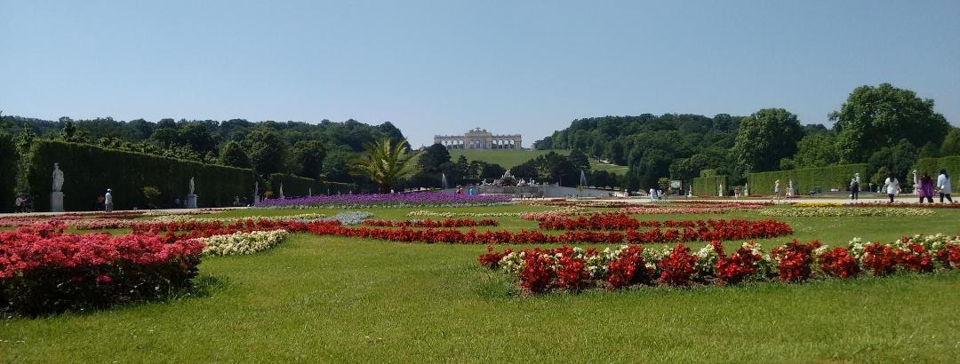 Blick hinauf zur Gloriette - Themenweg Schloss Schönbrunn