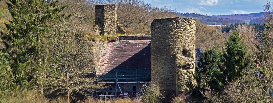 Wallrabensteiner Burg von Norden