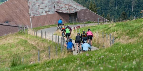Gruppe Biker