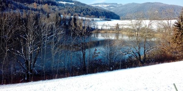 Kraiger See im Winterkleid mit Blickrichtung Norden