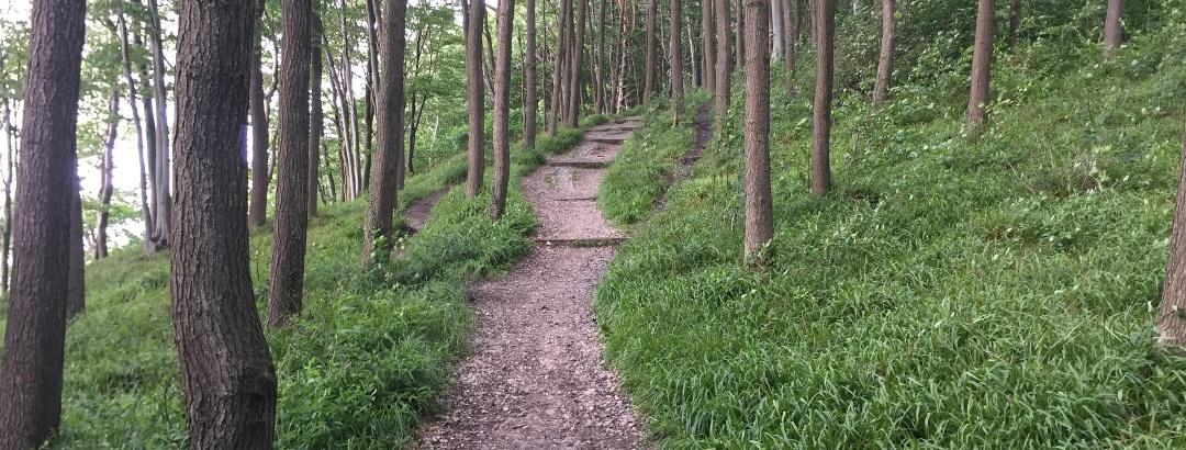 Trail zwischen Meierwik und Quellental