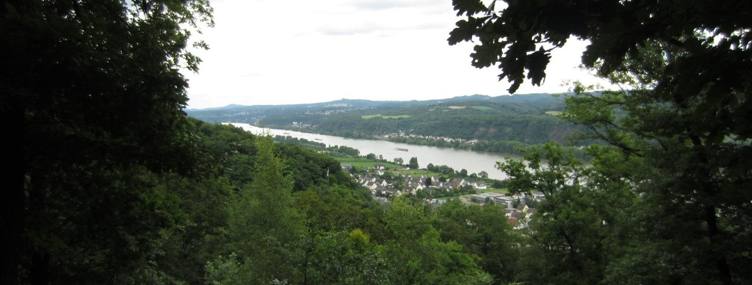 Blick aufs Rheintal (Juni 2013) - MTB-Runde bei Meckenheim
