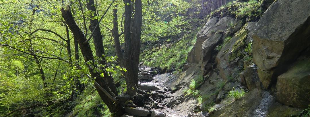 The beautiful hiking path in the Bodetal