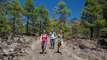 Wanderung im Teide-Nationalpark