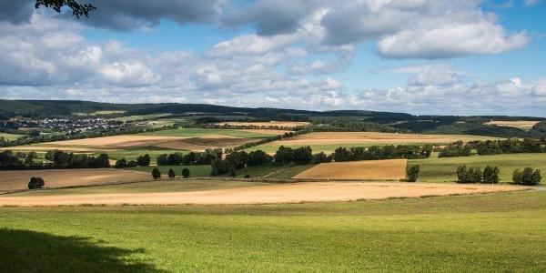Die Eifel bei Kempenich
