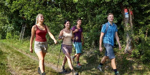 Wanderer auf dem Panoramaweg Taubertal