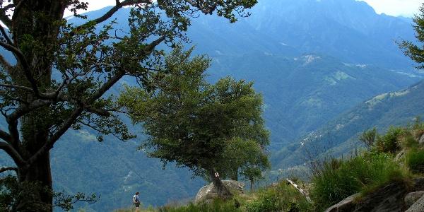 Wandern im wilden Onsernonetal.