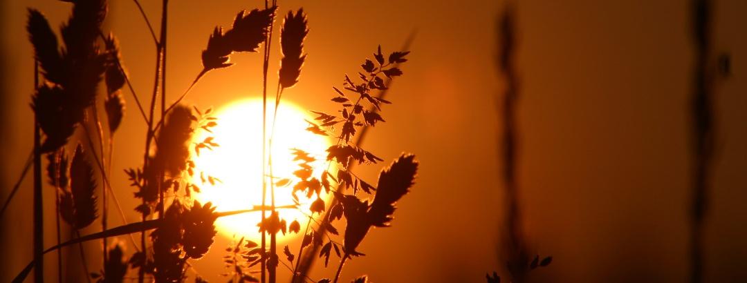 Sonnenuntergang in der 2-Thermenregion