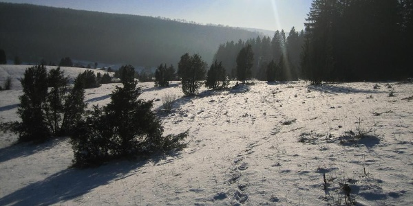 Winterlandschaft Hayingen