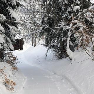 Winterwanderweg Fanas